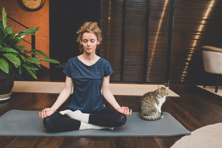 Woman meditating beside a cat.