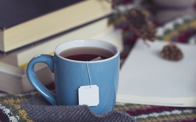 A cup of tea, books and a blanket in winter - stock photo