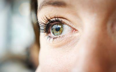 Bottom-up processing focuses on sensory stimuli