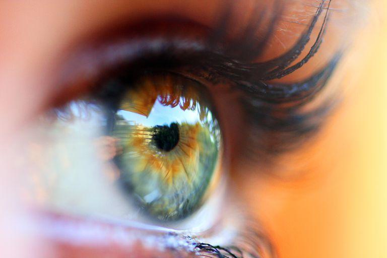 An eye perceiving the world