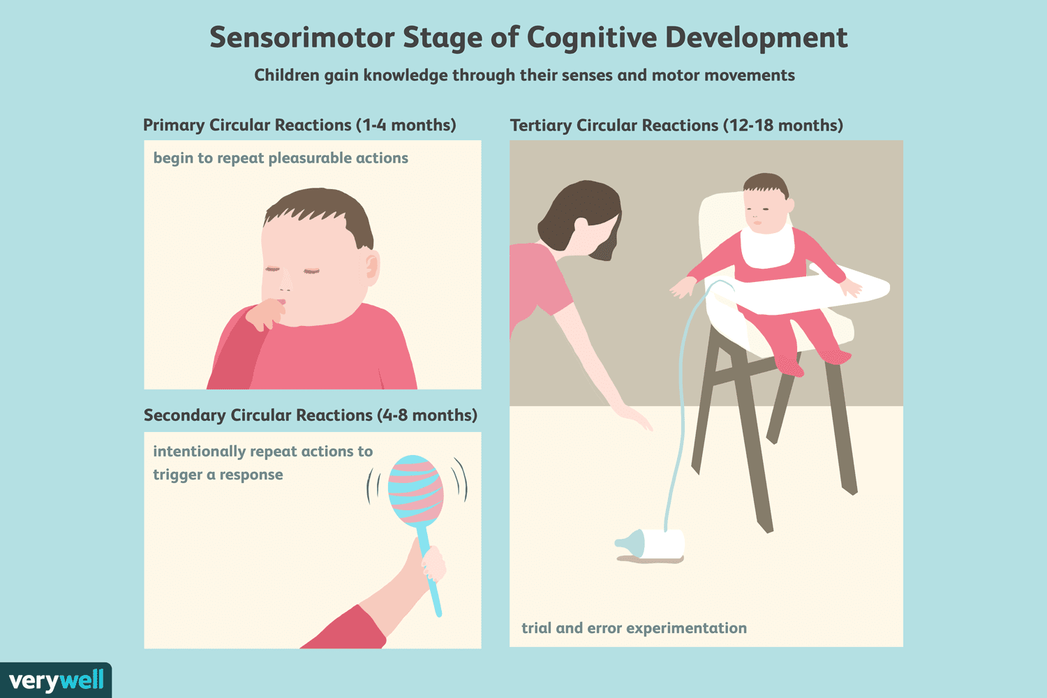 The sensorimotor stage of cognitive development for 4 stages of motor development