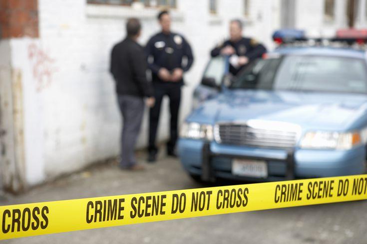What Criminal Psychologists Do