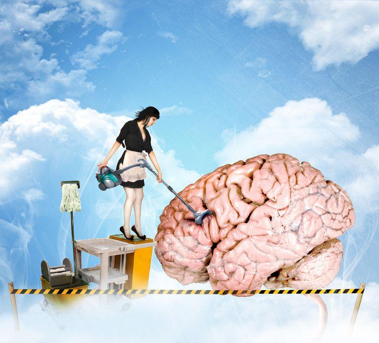 Sleep cleans up the brain