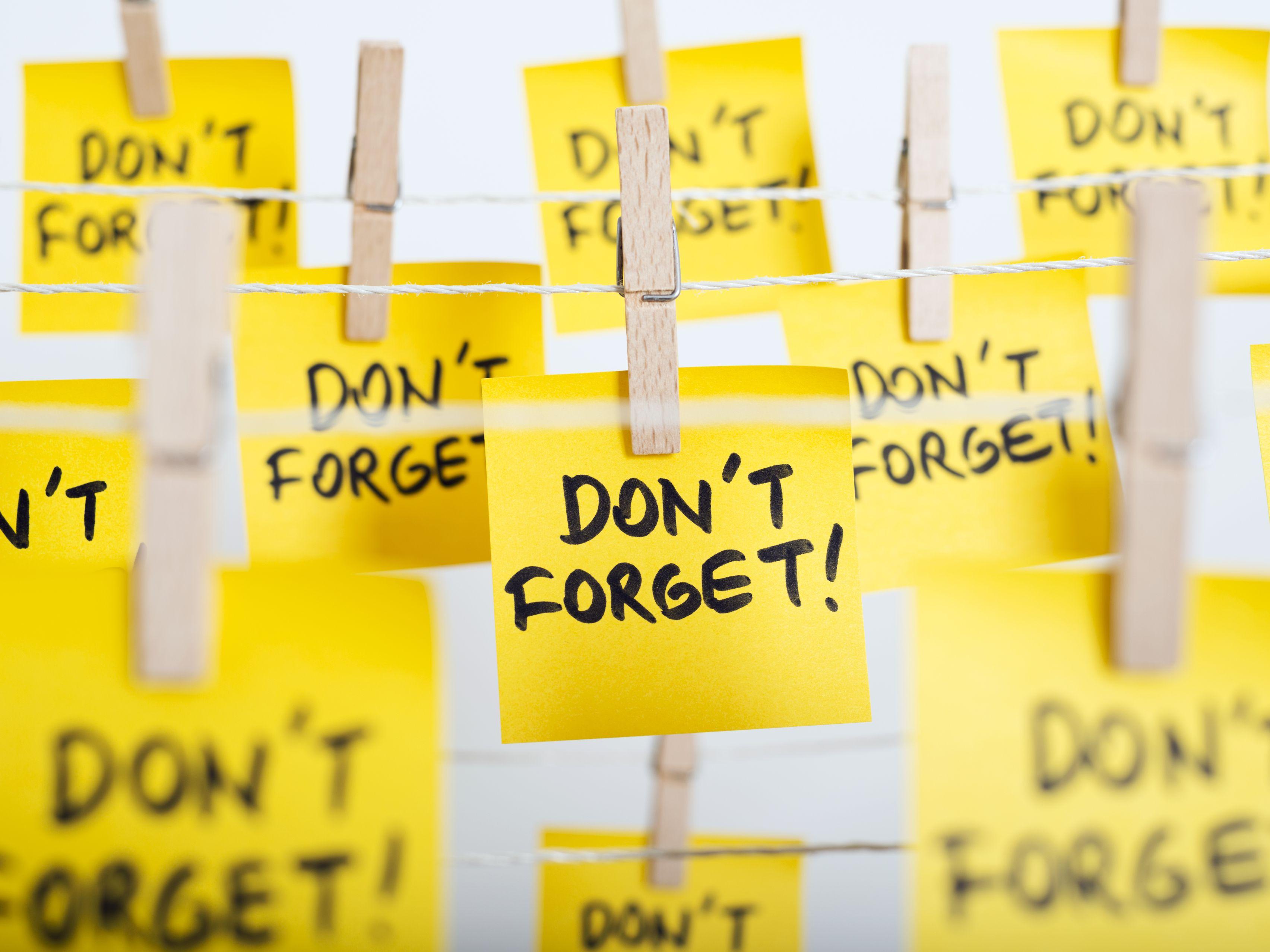 A Simple DIY Short-Term Memory Experiment