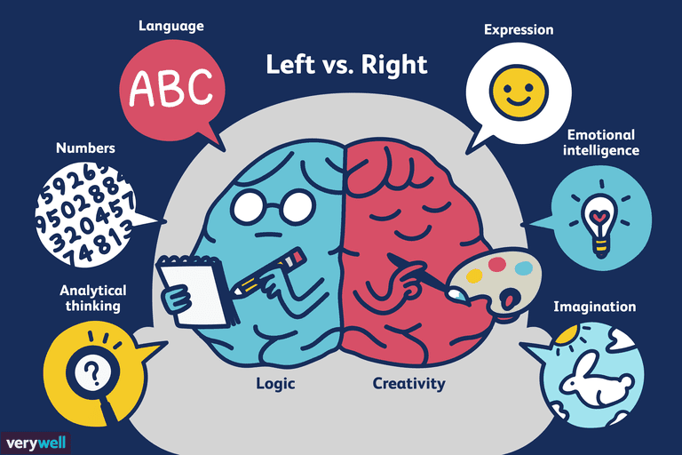 Illustration of Left vs. Right Brain
