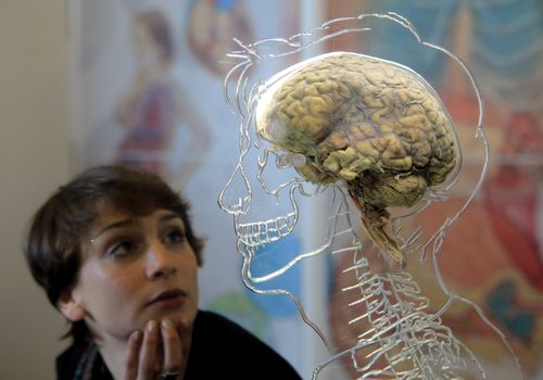 woman looking at human statue with brain