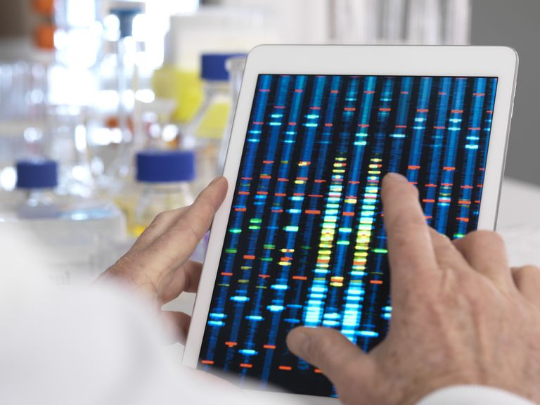 Scientics looking at genetic test results on tablet