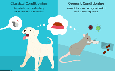 classical conditioning in advertising examples