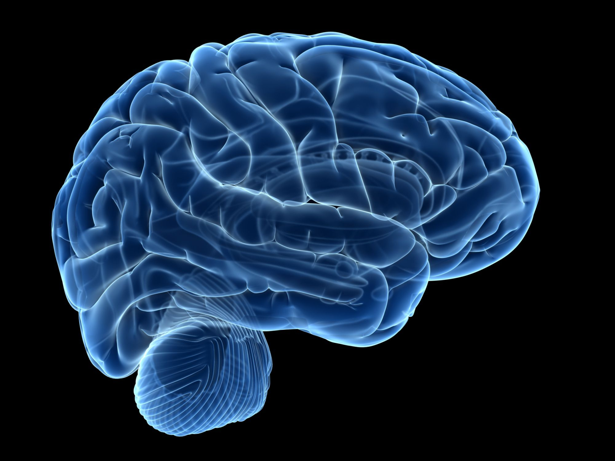 How To Workout Your Brain And Get Smarter   sport1stfuture org