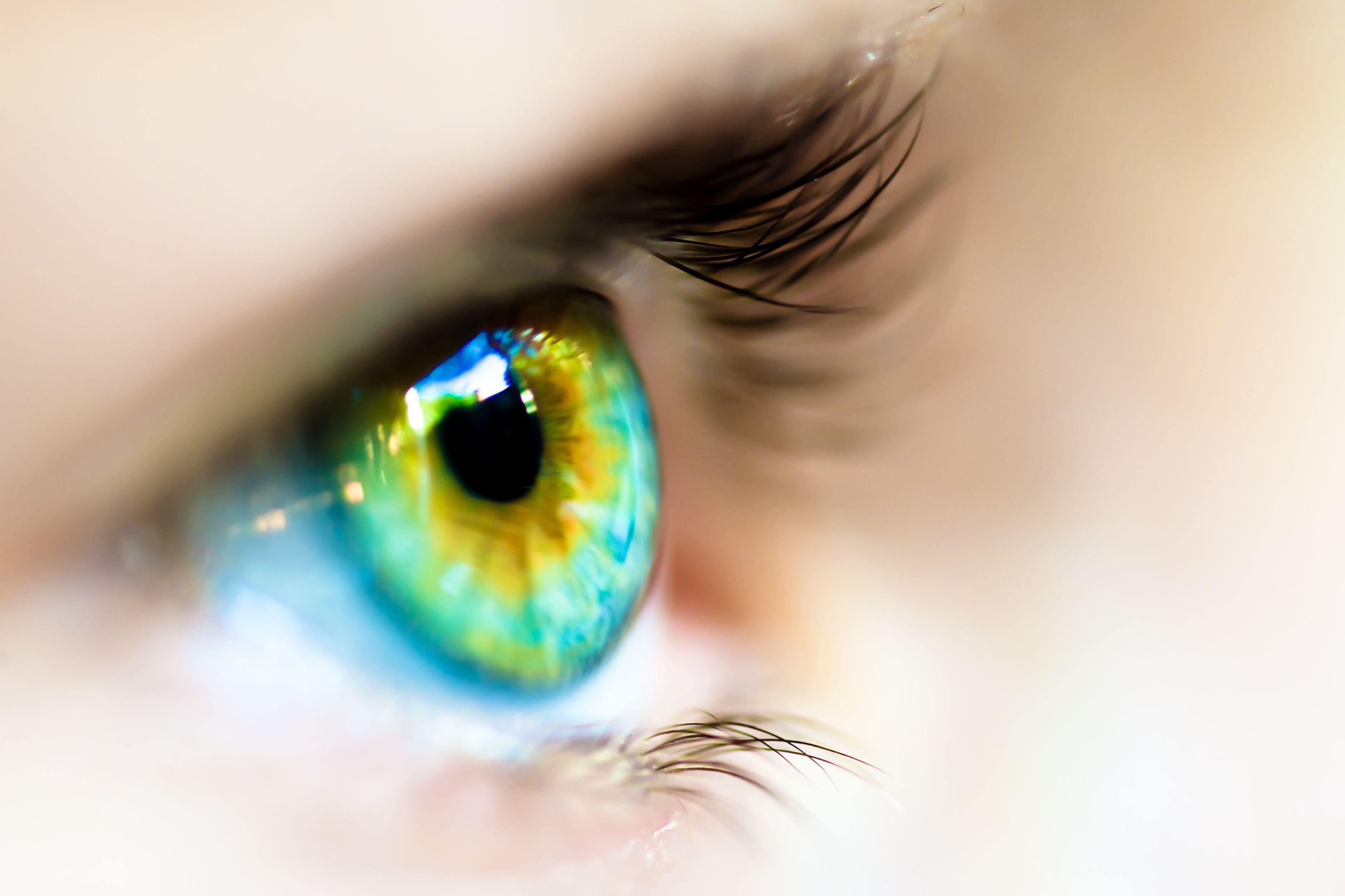 Monocular Cues for Depth Perception