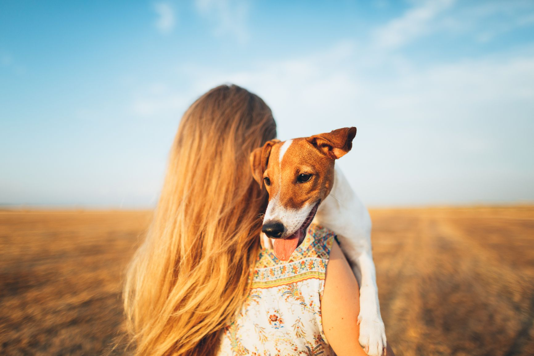 Animal-Assisted Therapy Dogs for Panic Disorder